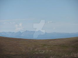 Alpine Tundra by shutter-crazy