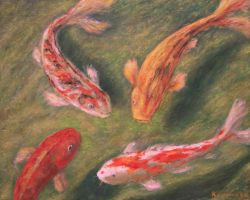 Koi fish 2 by Landscapist