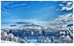 Winter Wonderland by deaconfrost78