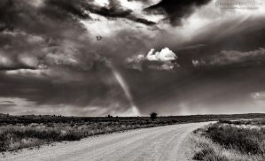 Kgalagadi Road by LinRuPhotography