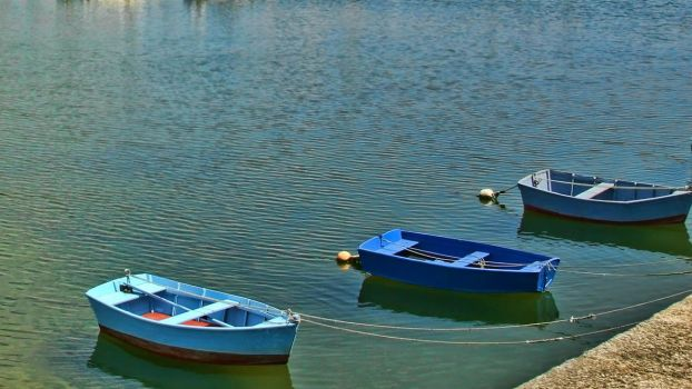 3 Rowers to shore by MichelLalonde