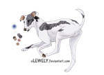 Greyhound - For adoption _CLOSED by Lew-LapinGris
