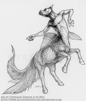 Hippocampus Centaur by LeccathuFurvicael