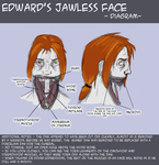Edward's Face - Reference by Koskish