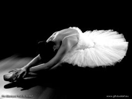The Dying Swan by gltvisualart