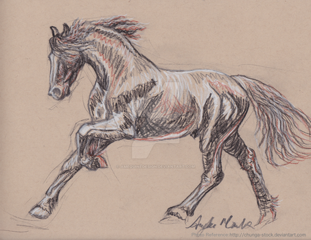 Friesian Sketch by amequinedesign