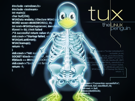 Tux the Linux Penguin by Jsung