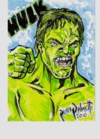 Hulk in Color by PeterPalmiotti