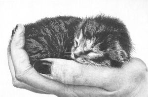 Kitty-4 days old by artistik-ly-bent