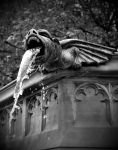 gargoyle by LucysPhotography1991