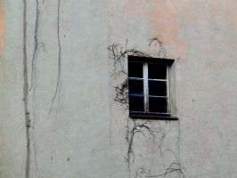 wall and window by Mittelfranke
