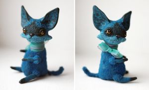 tiny blue cat by da-bu-di-bu-da
