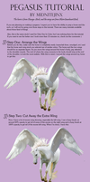 Pegasus Tutorial by midnitejinx