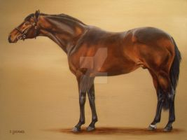 TB Stallion Cockney Rebel by Stephanie-Greaves