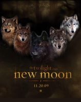 Fanart-New moon poster by FallenAngelWolf13