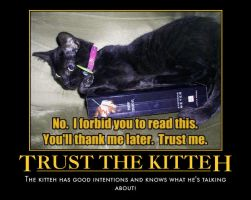 Kitteh Forbids You 2 Read This by plmethvin