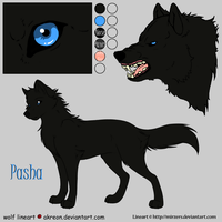 Pasha Reference Sheet by Jenny2-point-0