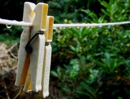Washing line by Jellings