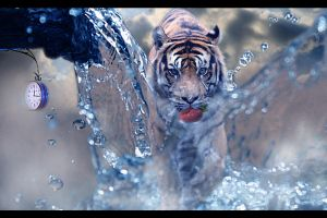 Behind The Water by Fahlezi