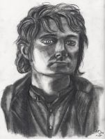 Mr Baggins by Kitt-Otter
