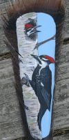 Feather Painting Pileated Woodpecker by VeronicaRosejones