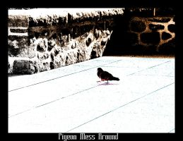Pigeon Mess Around... by Lord-Rhesus