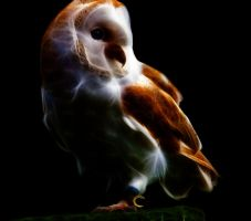 Owl Fractalius by markeverard