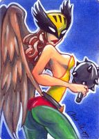 hawkgirl 2 by mainasha
