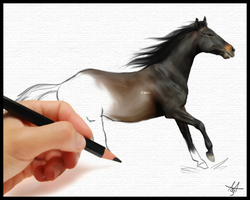 Horse Sketch by Cabelz