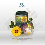 Blackberry curve 8520 by DisCal