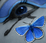 Adonis Blue MALE by Capoodra