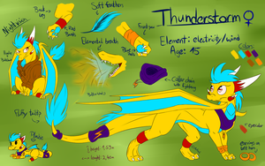 Thunderstorm Reference Sheet 2016 by Anfani