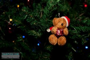 Teddy in the Christmastree... by OrisTheDog