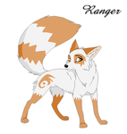 Ranger by wales48