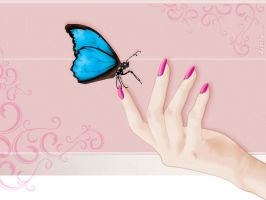 Butterfly by Vuenza