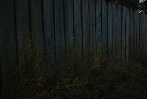 Fence by simmons9696