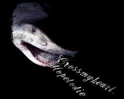 Crossmyheart. Hopetodie. Shark by littledarksprite