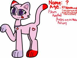 Adopted kitten {Read Description} by R3dXgaming