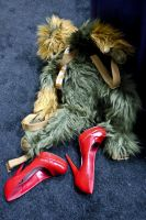 Chewie's Red Heels by makepictures