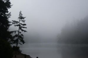 misty lake by Erica-Danes