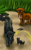 Graystripe Don't Go [redraw] by KakuroWolf
