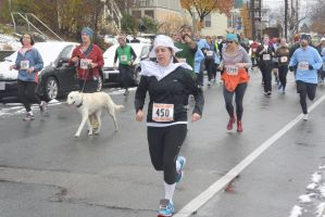 2014 Gobble Gobble Turkey Run, the Running Pilgram by Miss-Tbones