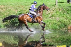 DHL Water Obstacle Series Bay Gelding Pt 4 by LuDa-Stock
