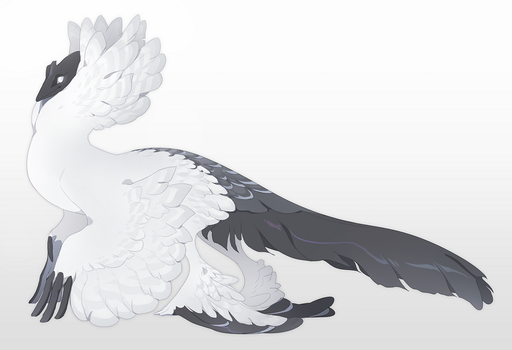 Satinette by QuillCoil