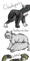 ThunderClan Medicine Cats by GingerFlight