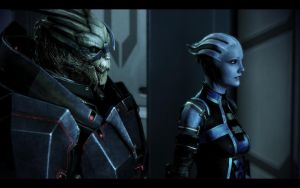 ME3 Garrus and Liara 3 by chicksaw2002