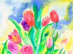 Tulips by founder-of-silence