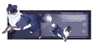 Constellation Canines: Gemini - SOLD! by lukazard