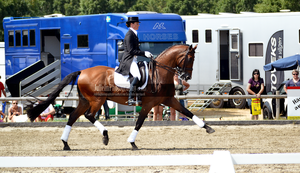 Dressage 14 by JullelinPhotography