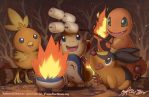 PKMN: Fire Starters by finni